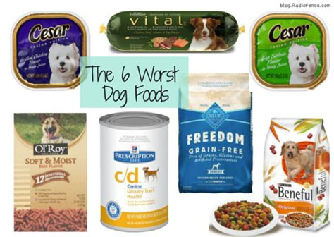 best puppy food brand radiofence