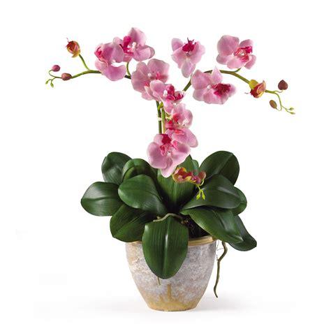 mini phalaenopsis silk flower arrangement silk