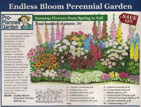 perennial garden plans zone 3 perennial bed plan from michigan bulb co west garden