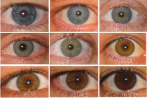 most common eye colors what color are your exactly