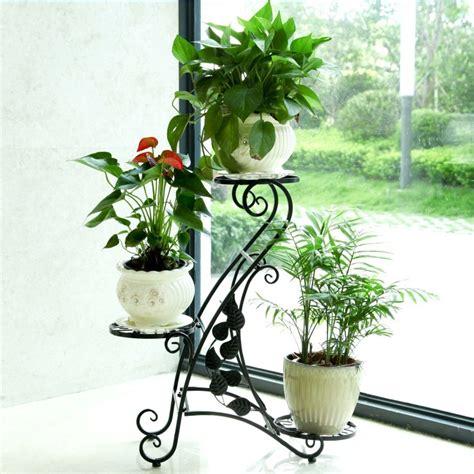 Anxi Qunsheng Garden Decoration Co Ltd by Products Anxi Jiangshun Trading Co Ltd