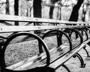 White And Black Bench Black And White Central Park Bench In New York City