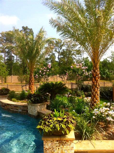 Tropical Backyards by Tropical Backyard Pool Tropical