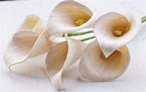 gambar bunga  kulit jagung contoh gambar bunga