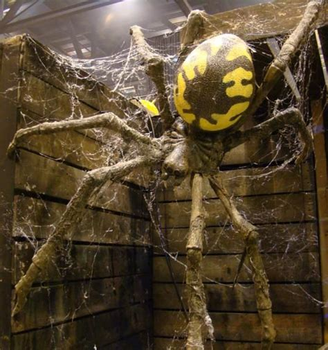 How To Make A Large Spider Decoration by 118 Best Images About Haunting Spider Nest Decorations