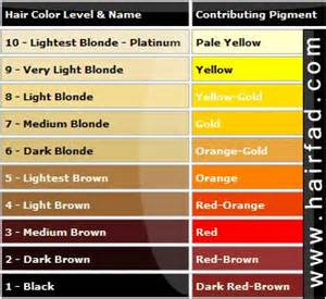 hair color level chart hair color charts color charts and charts on