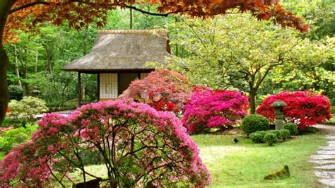 Der Schöne Garten 4250 by Japanischer Garten Das Wunder Der Zen Kultur Archzine Net