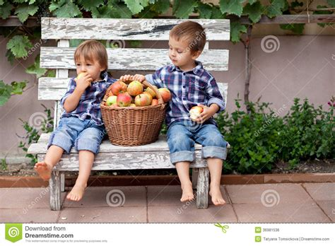 the backyard boys two boys eating apples royalty free stock image image