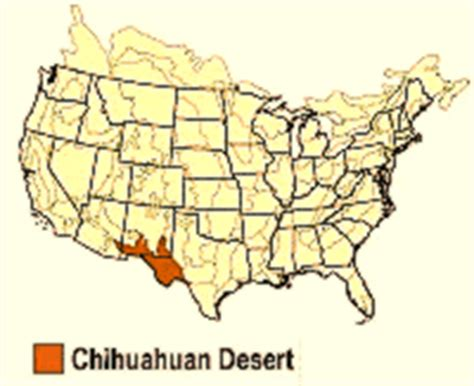 texas desert map wax cs gt history