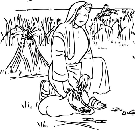 1000 Images About Bible Ruth On Pinterest Maze Ruth Coloring Pages