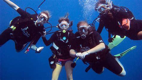 dive koh tao scuba diving koh tao koh tao a complete guide