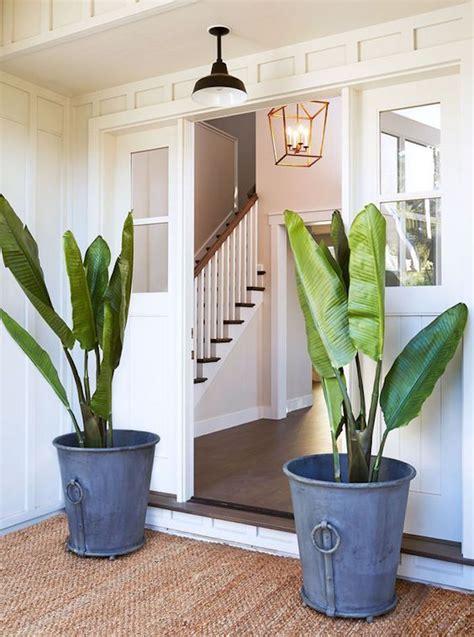 pretty ideas  front porch plants becki owens