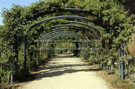 descanso gardens pasadena  closer  nature