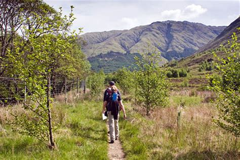 nature scotland outdoors magazine grough official figures show more scots heading for the