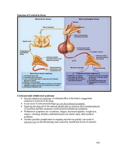 Cortisol Detoxing by Lecture 21 Adrenal Glands Diseases Pathology