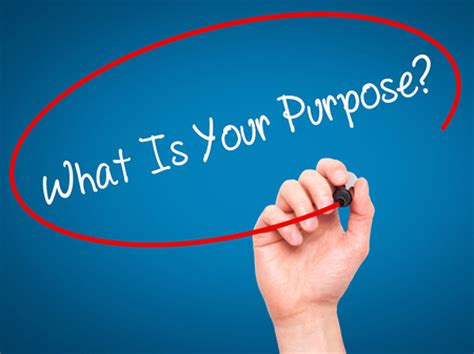 what is the purpose of what s the fuss about a purpose amir