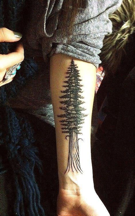 tattoo meaning pine tree evergreen tattoo tattoos pinterest nature love this