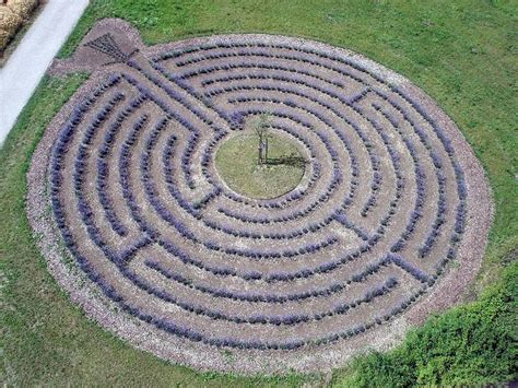 lavender maze lavender labyrinth in europe the odd board pinterest