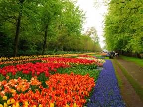 Picture Flower Garden 20 Keukenhof Wallpapers Hd Widescreen Desktop Backgrounds