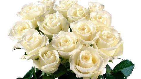 Красные розы картинки букет