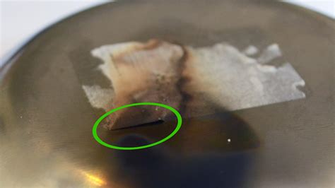 Remove Sticker From Stainless Steel how to remove a sticker from stainless steel 14 steps
