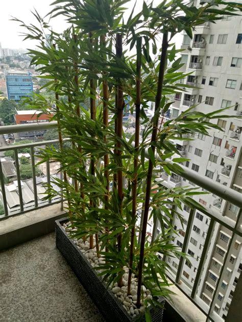 jual tanaman hias plastik partisi bambu  lapak fatih