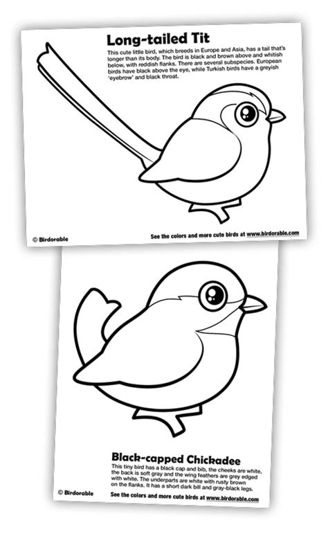 New Coloring Pages: Black-capped Chickadee and Long-tailed