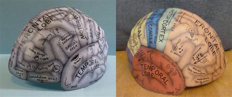 brain hat template brain hat template image collections template design ideas