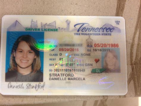 tennessee id card template dept of motor vehicles driver s license impremedia net