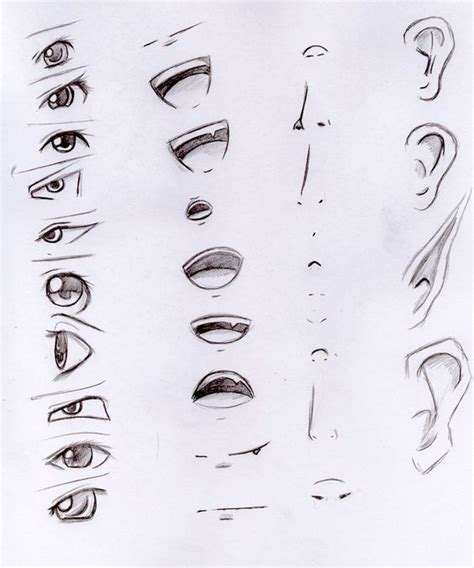 anime nose how to draw a nose pinterest how to draw anime manga and