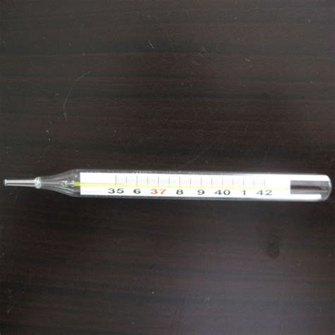Termometer Hg mercury thermometer www imgkid the image kid has it