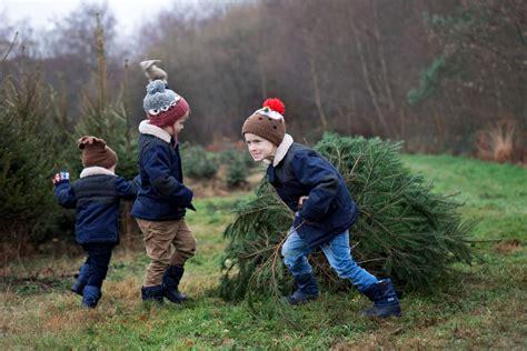 the christmas tree farm 2016 keep up with the jones family