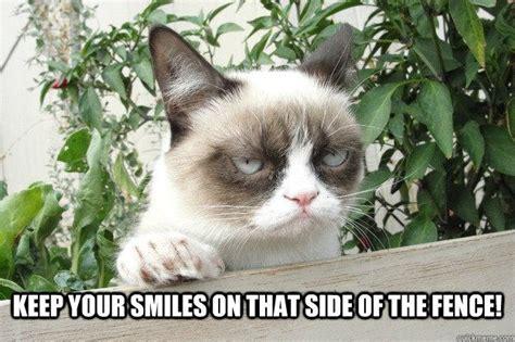 Smile Funny Meme - 15 grin worthy smile memes