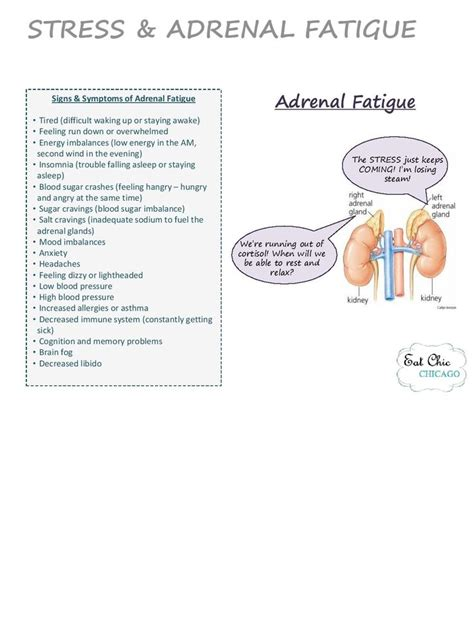 Detox From Adenal Fatigue by Adrenal Fatigue Guide Signs Symptoms Eat Chic