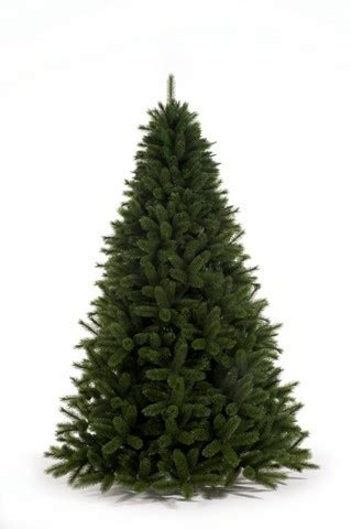 christmas tree without lights siberian spruce 210 cm