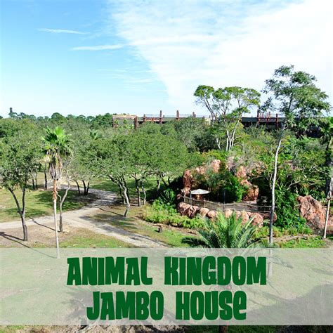 jambo house disney with toddlers animal kingdom jambo house jenn elwell