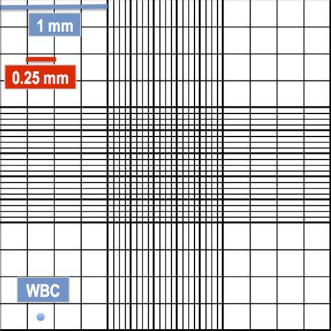 25 Square Meter hemocytometer square size hemocytometer