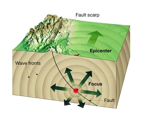 Earthquake Science | activity 2 fault slip and seismic waves and learning
