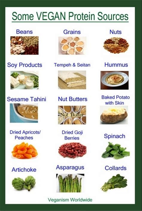 non vegetarian foods here is just a short list there are more vegan protein