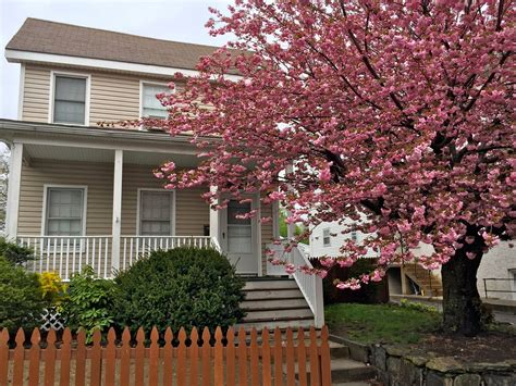 cherry tree and associates steiner real estate associates find your home