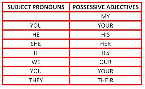 Possessive Adjectives Picture And Images
