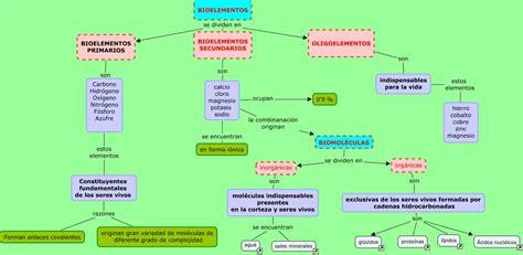 cadenas hidrocarbonadas clasificacion bioelementos y biomol 233 culas