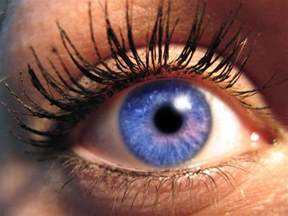 the rarest eye color eye color eye colors common and uncommon types1