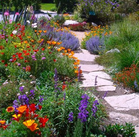how do you say the color orange in colors in your garden www coolgarden me