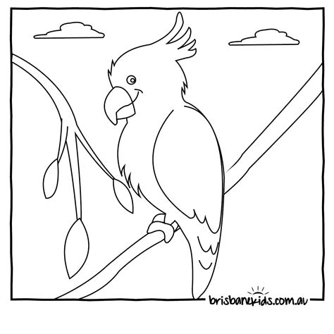aboriginal art bird coloring page coloring pages