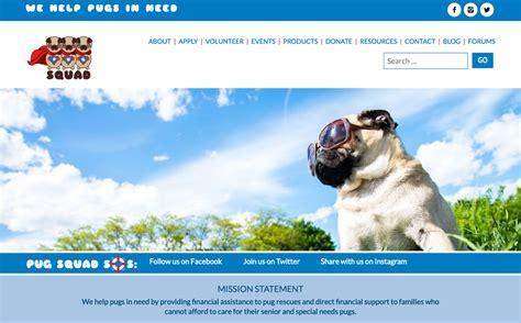 northeast pug rescue home pug squad