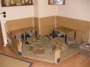 habitat et accessoires