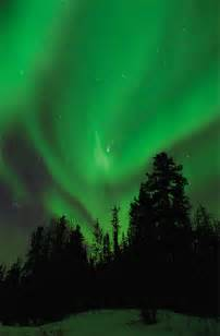 northlight color northern lights or borealis explained