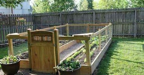 Raised Garden Boxes Enclosure Garden Pinterest Vegetable Garden Enclosures
