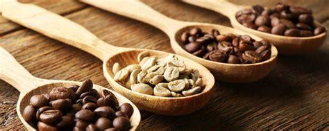 Kopi Robusta Lung 12 mengenal beragam jenis biji kopi dari seluruh dunia